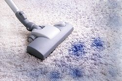 Carpet Cleaning Bayswater