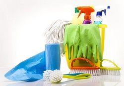 Bayswater Cleaning Companies W2